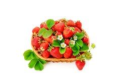 在白色背景隔绝的一个柳条筐的草莓 库存照片