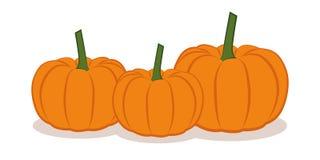 在白色背景隔绝的三橙色pumpkings 皇族释放例证