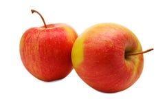 在白色背景隔绝的两个成熟苹果特写镜头  免版税库存图片