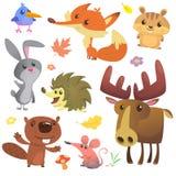 在白色背景隔绝的套逗人喜爱的森林动物 动画片鸟猬海狸小兔花栗鼠狐狸老鼠和麋 库存例证
