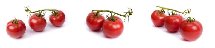 在白色背景隔绝的成熟蕃茄 与花萼的整个菜 免版税库存照片