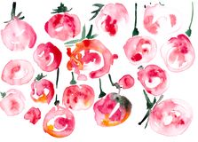 在白色背景隔绝的抽象红色果子 免版税库存照片