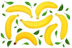 在白色背景隔绝的整个香蕉 顶视图 平的位置 无缝的模式 库存图片
