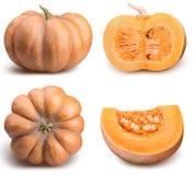 在白色背景隔绝的新鲜的橙色南瓜 库存图片