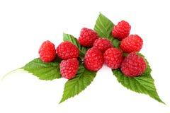 在白色背景隔绝的新鲜的红草莓果子 免版税库存图片