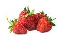 在白色背景隔绝的新鲜的草莓 库存图片