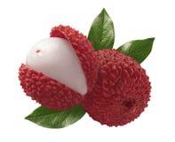 在白色背景隔绝的新lychee构成 库存照片