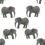 在白色背景隔绝的无缝的样式水彩大象 免版税库存图片