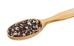 在白色背景隔绝的木匙子的混杂的米 黑,红色,棕色,印度大米混合 免版税库存照片