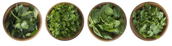 在白色背景隔绝的木碗的新鲜的香菜、芹菜、香菜和蓬蒿叶子 与拷贝空间fo的草本 免版税库存图片