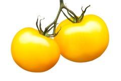 在白色背景隔绝的束黄色蕃茄 免版税库存图片