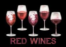 在白色背景隔绝的水彩杯红葡萄酒 库存照片