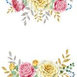 在白色背景隔绝的水彩玫瑰色框架 免版税库存图片