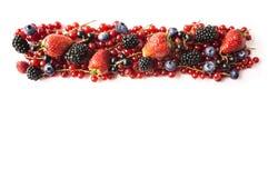 在白色背景隔绝的混合莓果 成熟红浆果,草莓,黑莓,蓝莓,在白色bac的黑醋栗 免版税库存照片