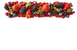 在白色背景隔绝的混合莓果 成熟红浆果,草莓,黑莓,蓝莓,在白色bac的黑醋栗 免版税图库摄影