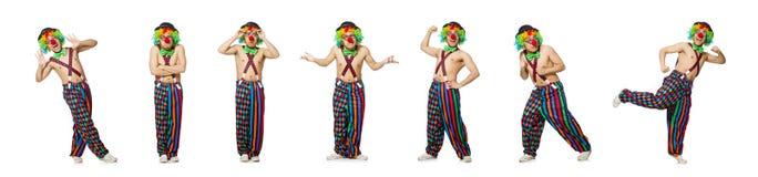 在白色背景隔绝的滑稽的小丑 免版税库存照片