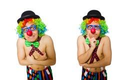 在白色背景隔绝的滑稽的小丑 库存照片
