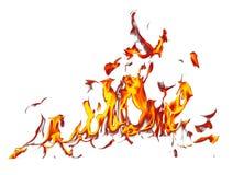 在白色背景隔绝的火火焰 向量例证