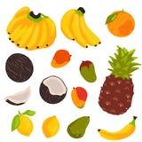 在白色背景隔绝的热带水果收藏 库存例证