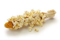 在白色背景隔绝的玉米棒的玉米花 免版税库存图片