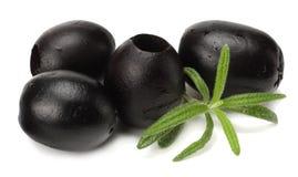 在白色背景隔绝的用卤汁泡的黑橄榄 免版税库存图片