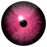 在白色背景隔绝的疯狂的桃红色3d眼珠,黑小的学生 库存例证