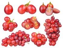 在白色背景隔绝的红葡萄 库存图片