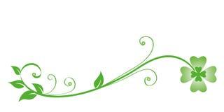 在白色背景隔绝的绿色卷须三叶草 库存例证