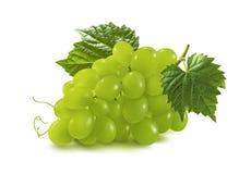 在白色背景隔绝的绿色葡萄束 免版税图库摄影