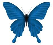 在白色背景隔绝的美丽的蝴蝶 库存例证