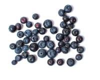 在白色背景隔绝的蓝莓果子 免版税库存图片