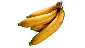 在白色背景隔绝的被收获的成熟金黄香蕉 免版税库存照片