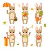 在白色背景隔绝的设置逗人喜爱的兔子字符 秋天字符的汇集 E 库存例证