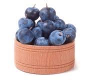 在白色背景隔绝的一个木碗的黑刺李莓果 图库摄影