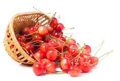 在白色背景隔绝的一个柳条筐的桃红色樱桃 免版税图库摄影