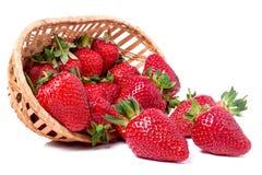 在白色背景隔绝的一个柳条筐的草莓 免版税库存照片
