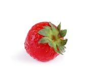 在白色背景隔绝的一个整个草莓 与鲜绿色的叶子的一个鲜美红色草莓 健康果子概念 免版税图库摄影