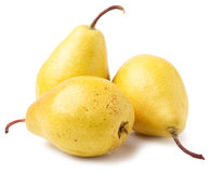 在白色背景隔绝的三个成熟黄色梨 图库摄影