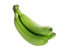 在白色背景隔绝的三个绿色香蕉 没有树荫 库存图片