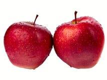 在白色背景隔绝的两个湿红色苹果 免版税库存照片