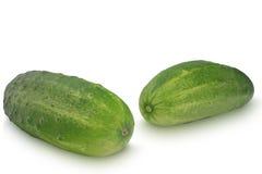 在白色背景隔绝的两个黄瓜 免版税库存图片