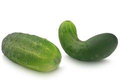 在白色背景隔绝的两个黄瓜 免版税图库摄影