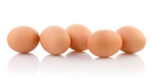 在白色背景隔绝的五个鸡蛋 库存照片
