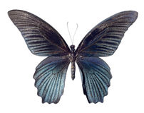 在白色背景隔绝的伟大的摩门教蝴蝶 免版税库存照片