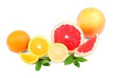 在白色背景隔绝的健康柑橘 滋补整个和被切的桔子、自然柠檬和鲜美葡萄柚 库存图片