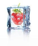 在白色背景隔绝的冰的草莓 库存图片