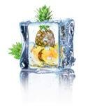 在白色背景隔绝的冰的菠萝 库存照片