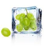 在白色背景隔绝的冰的葡萄 免版税库存图片