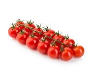 在白色背景隔绝的分支的成熟新鲜的西红柿 库存照片
