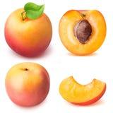 在白色背景隔绝的切片成熟杏子集合 免版税图库摄影